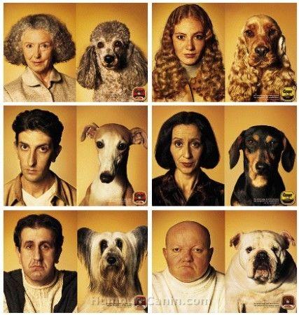 Humour.canin c est tros marant il y a des blage sur les chiens